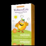 Multivitamine şi minerale pentru copii WellnessKids