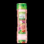 Şampon anti-mătreaţă cu extracte din brusture şi grapefruit Nature Secrets