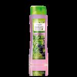 Şampon pentru păr fin cu extracte din rozmarin şi coacăze negre Nature Secrets